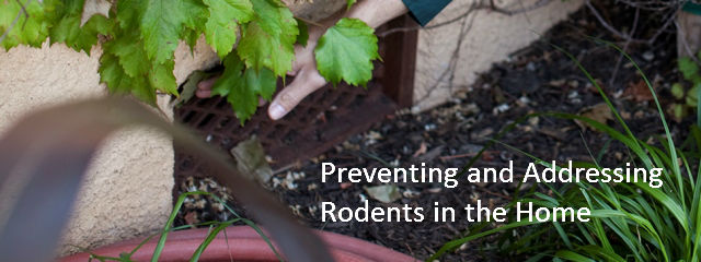 home protection from rodents